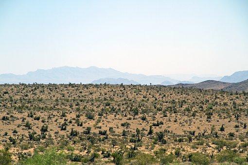 Red Rock Canyon, Las Vegas, Nevada, Landscape, Desert