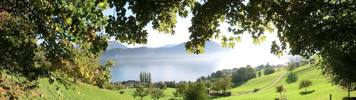 Nature, Weggis, Lake Lucerne Region