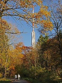Autumn Forest, Sauerland, Northern Bright, Transmitter