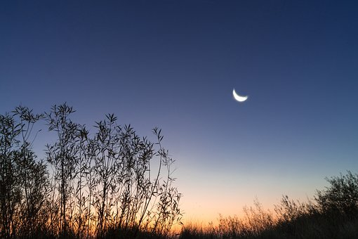 Morning, Moon, Sunrise, Natural Spectacle, Romantic