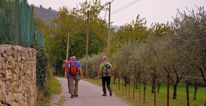 Excursion, Road, Olive Trees, Valle, Trail, E5