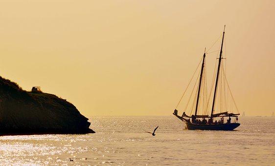 Sailing Ship, Scoglio, Lake, Seagull, Garda, Sails