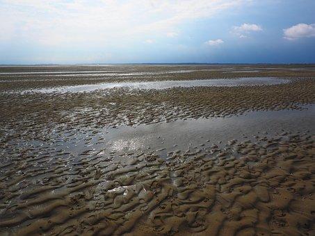 Shallow, Watts, Wadden Sea, Priel, Sand, Watt Hike