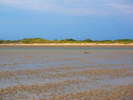 Priel, Watts, Wadden Sea, Shallow, Dunes