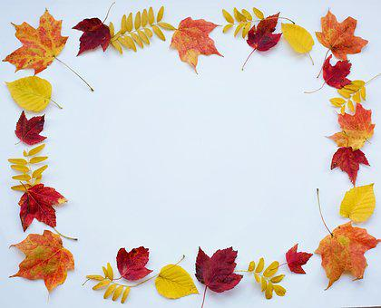 Autumn, Fall, Leaves, Text Space, Border, Frame, Nature
