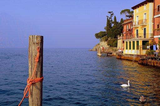 Lake, Mooring, Swan, Houses, Garda, Malcesine, Italy