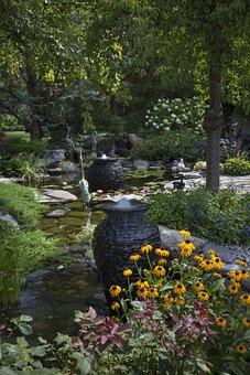 Pond, Fish, Waterfalls, Water, Nature, Animal, Carp
