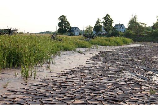 River, Muddy, Country, Farmland
