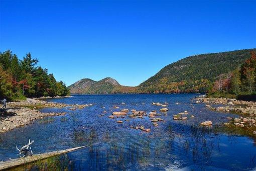 Lake, Shore, Rocks, Branch, Trees, Mountains, Water