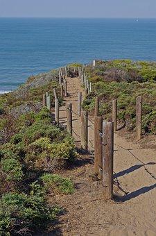 Web, Away, San, Wood, Path, Nature, Hiking, Landscape