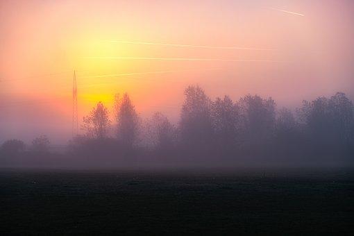 Fog, Sun, Sunrise, Morgenrot, Dawn, Landscape, Trees