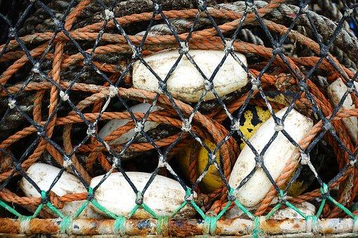 Fishing, Equipment, Net, Float, Rope, Cord, Catch