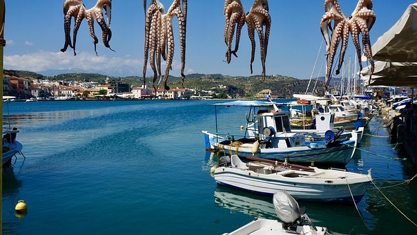 Squid, Octopus, Boat, Sea, Fishing Boat, Water, Greece