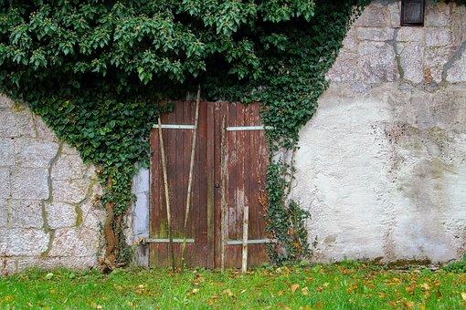 Door, Goal, Old Door, Wood, Old, Old Gate, Plant, Ivy