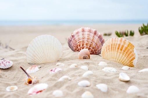 Beach, Sand, Ocean, Sea, Summer, Vacation, Water