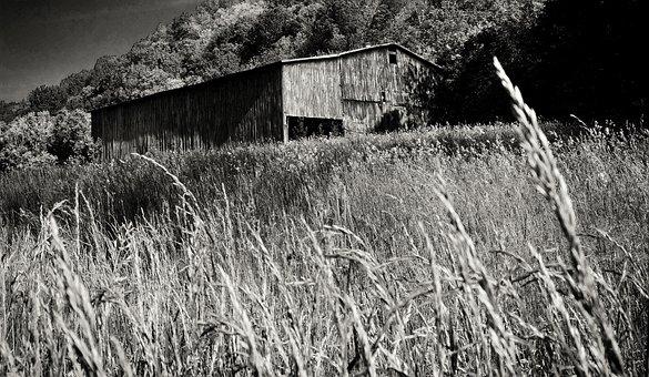 Black And White, Barn, White, Black, Farm, Rural
