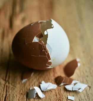 Egg, Hen's Egg, Eggshell, Bi Color, Brown Egg