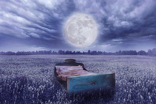 Bed, Full Moon, Meadow, Field, Good Night, Moonlight