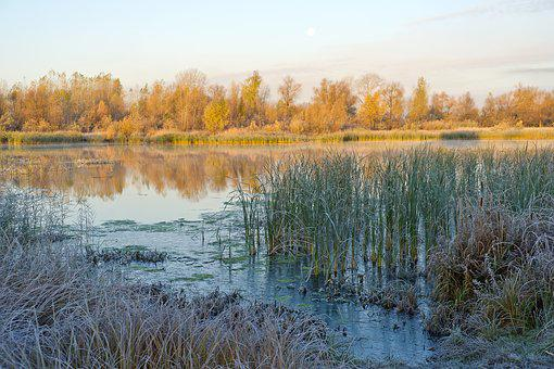 River, The First, Siberia, Autumn, Frost, Landscape
