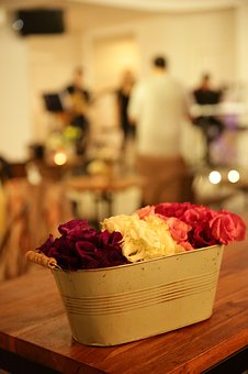 Music, Coffee, Cafe, Cup, Flowers, Concert, People