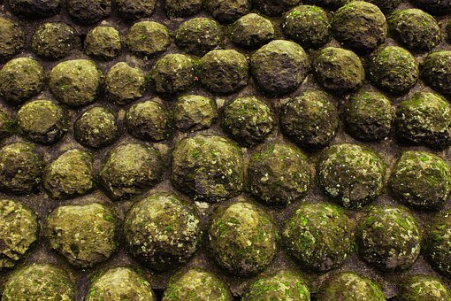 Pattern, Cannon, Ball, Weapon, War, Moss, Nature