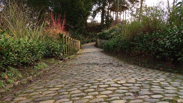 Path, Pavement, Pierre, Road Pavers, Bush, Hedge, Park