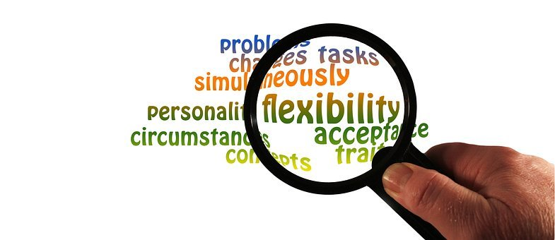 Magnifying Glass, Flexibility, Personality, Trait