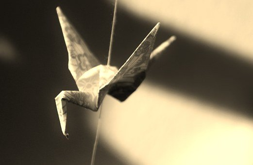 Origami, Paper, Bird, Tinker, Shadow, Caught, Folded