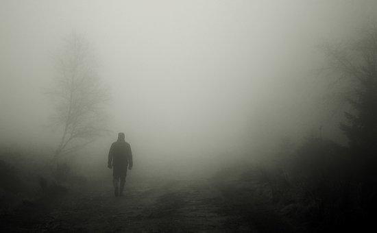 Walkers, Autumn, Fog, Man, Human, Mood, Atmosphere