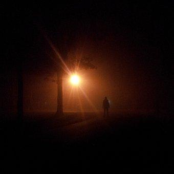 Night, Stalker, Person, Scary, Hide, Light, Spooky
