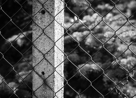Fence, Column, Wire, Street, City, Macro, Close, Detail