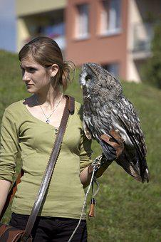 Owl, Croaker, Birder, Falconer, Woman, Bird, Animal