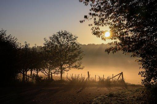 Autumn Landscape, Foggy Landscape, Lights, Autumn Mood