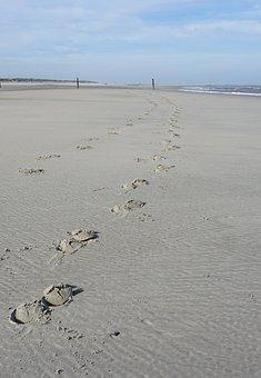 Beach, Traces, Hoof, Sand, Trace, Footprint, Sand Beach