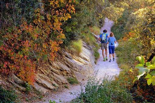 Trail, Autumn, Couple, Walk, Tourist, Tourism
