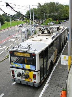 Transport, Public Transport, Trolley Bus, Bus, Vehicle