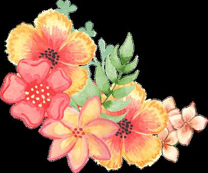 Floral, Decoration, Embellishment, Watercolor, Flowers
