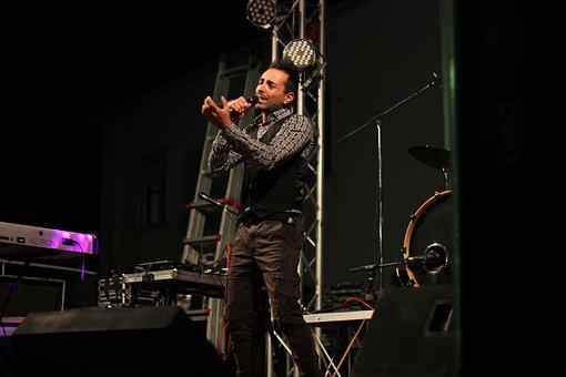 Concert, Music, Singer, Musical Instrument, Microphone