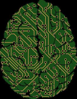 A, I, Ai, Anatomy, Artificial Intelligence, Biology