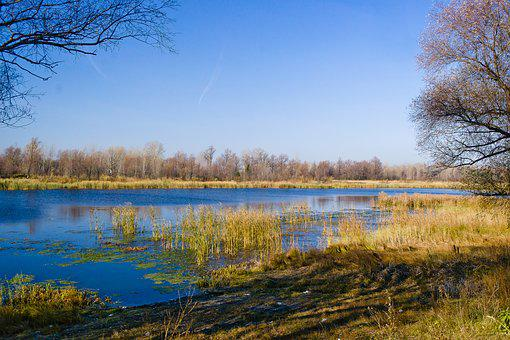 Beautiful, Nature, Blue, Lake, Frost, Background, Sky