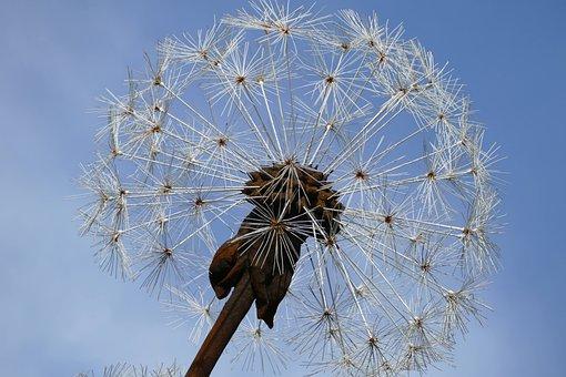 Art, Dandelion, Filigree, Welding, Garden, Sky