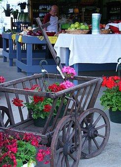 Farm, Farm Market, Flower Cart, Flower, Geranium