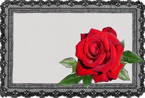 Greeting Card, Lace Frame, Red Rose