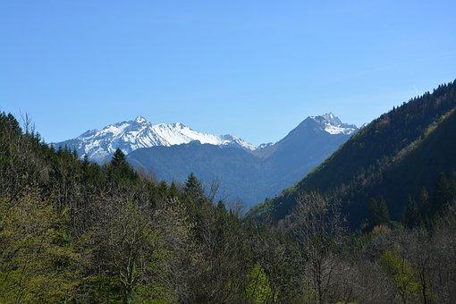 Mountain Landscape, Haute-savoie, Eternal Snow, Fir