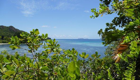 Seychelles, Beach, Sea, Indian Ocean, Island