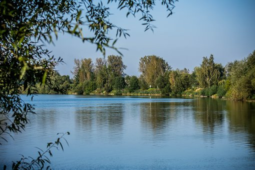 Lake, Water, Tree, Autumn, Landscape, Lagoon, View