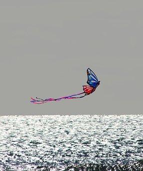 Sea, Kite, Nature, Blue, Fly