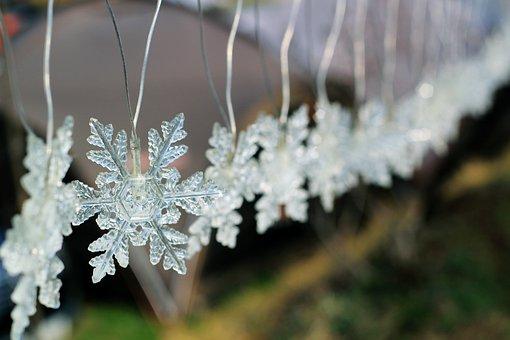 Winter, Snow Flower, Lighting, Snow Crystals