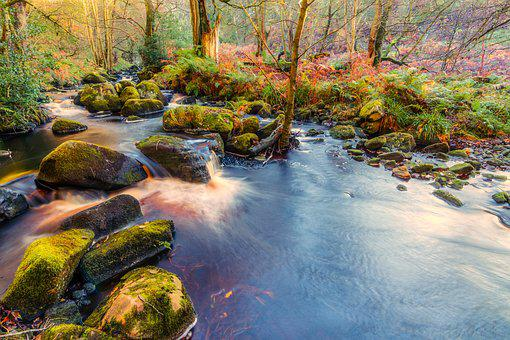 Valley Of Desolation, Yorkshire, Bolton Abbey