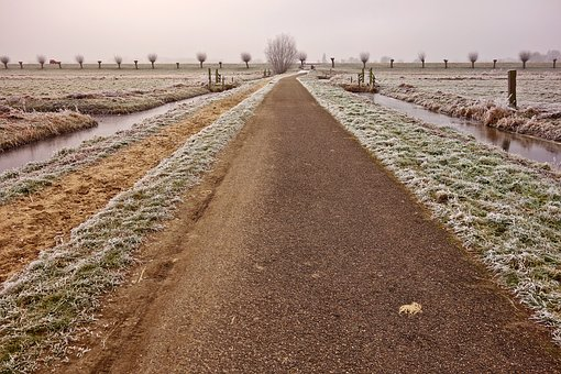 Road, Country Road, Bollards, Horizon, Winter